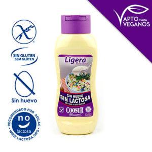 Salsa-ligera-sin-huevo-y-sin-lactosa (