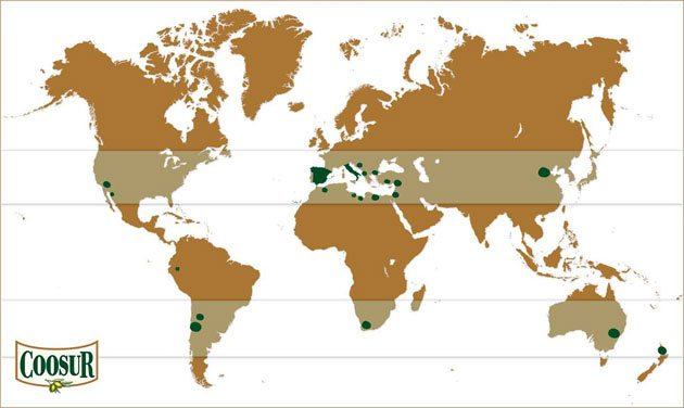 Olive oil producing countries